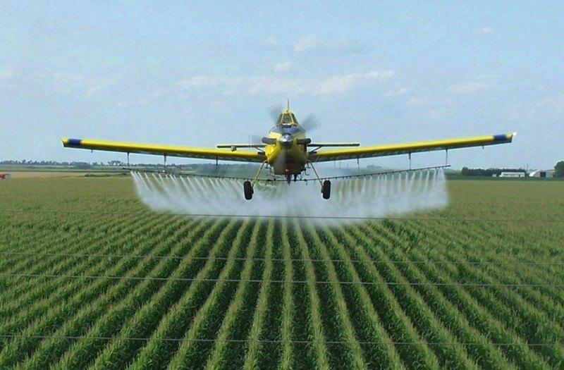 Почему в Украине так популярны пестициды на основе прометрина?