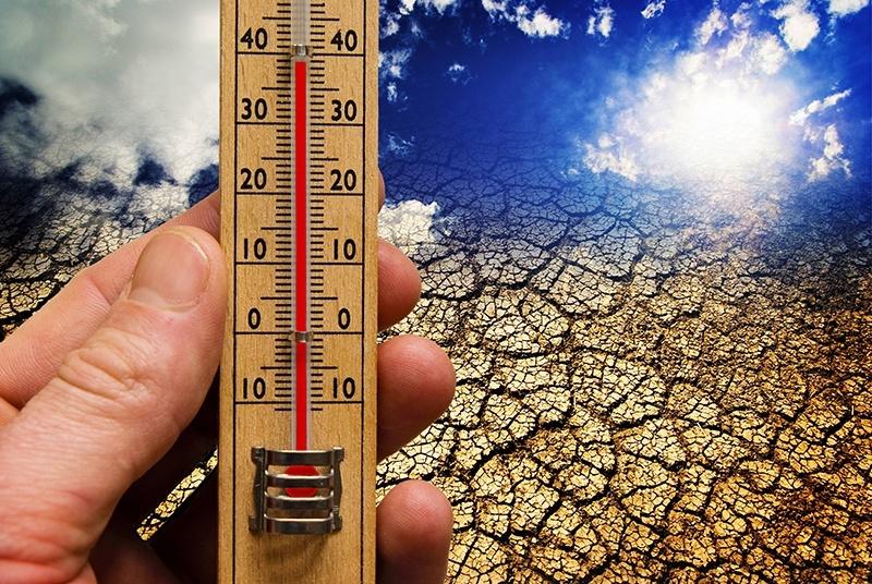 Зависимость действия пестицидов от высоких температур