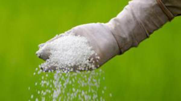 Рынок минеральных удобрений: перспективы и альтернатива