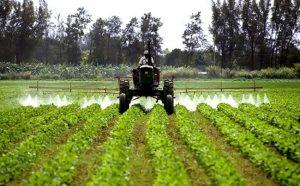 Виды азотных удобрений и их эффективность.