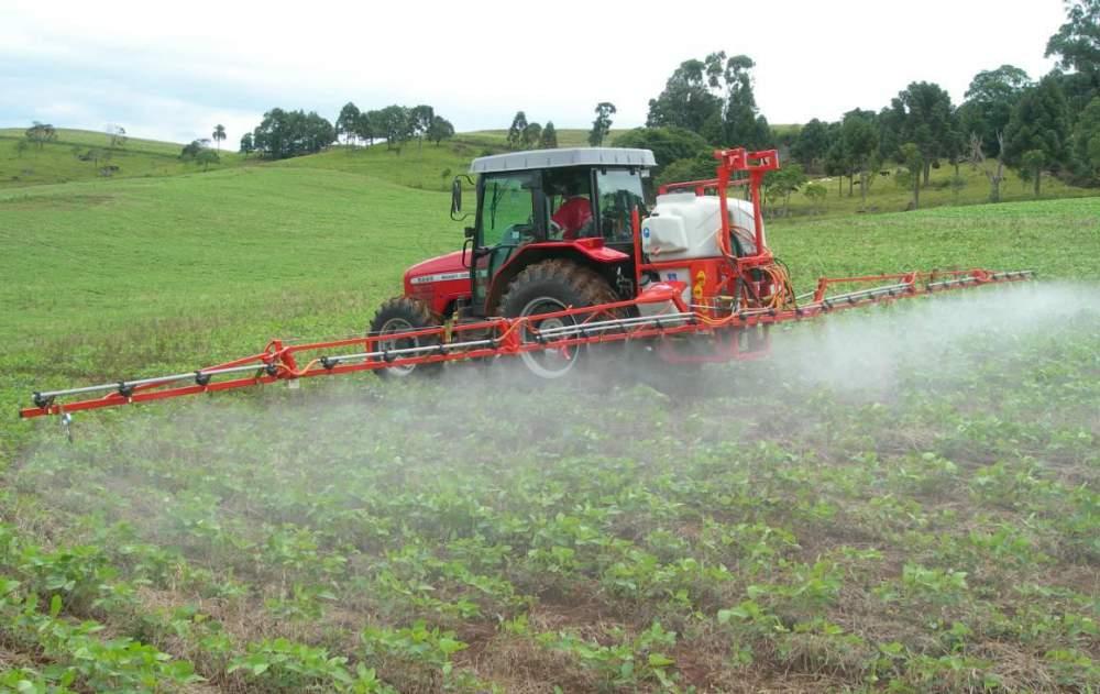 Применение гербицидов в посевах овощных культур