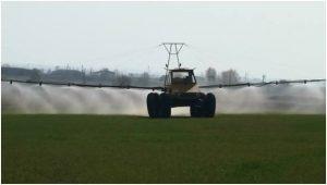 Фунгицидная защита пшеницы
