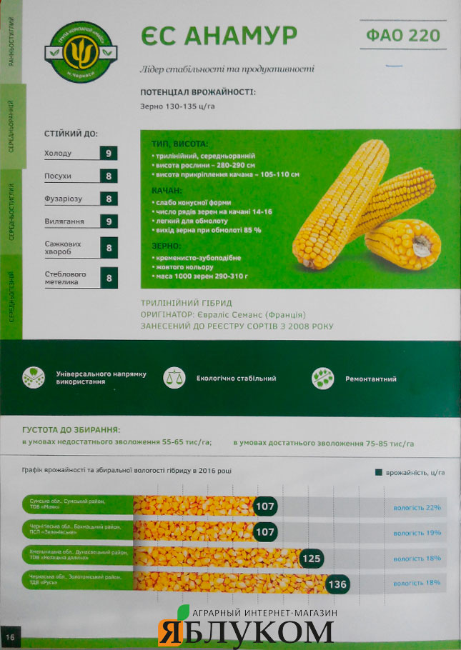 Семена кукурузы Анамур