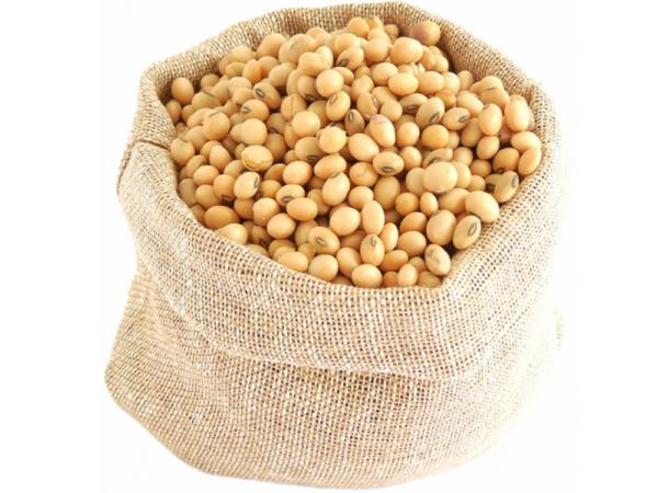Семена сои Антрацит