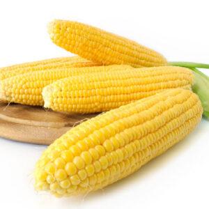 [:ru]Сахарная кукуруза Багратион[:ua]Цукрова кукурудза Багратіон[:]