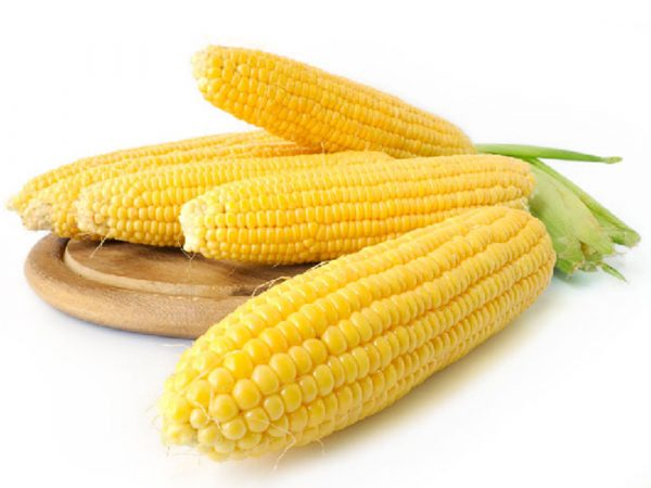 Сахарная кукуруза Багратион