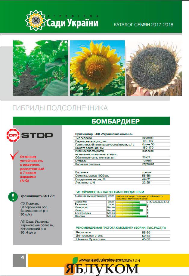 Семена подсолнечника Бомбардиер (Равенна)