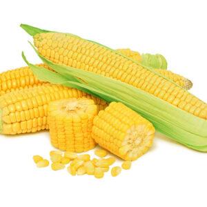 [:ru]Семена кукурузы Днепровский 257 [:ua]Насіння кукурудзи Дніпровський 257 [:]
