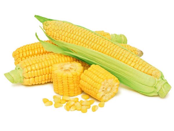 Семена кукурузы Днепровский 257