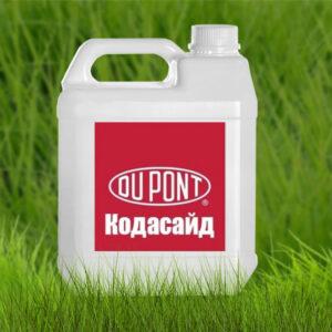 [:ru]Прилипалель Кодосайд[:ua]Прилипач Кодасайд[:]