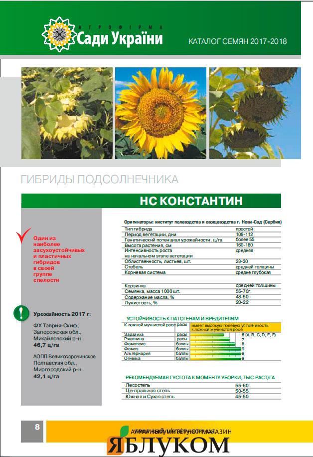 Семена подсолнечника НС Константин