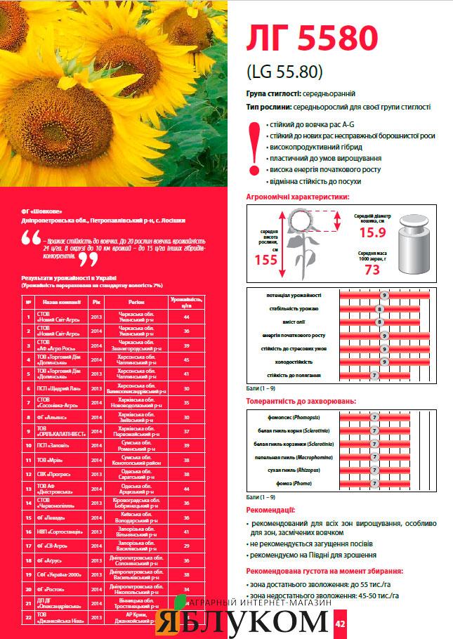 Семена подсолнечника ЛГ 5580