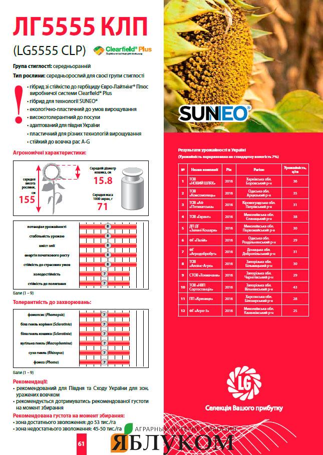 Семена подсолнечника ЛГ 5555