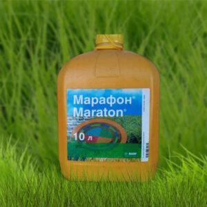 [:ru]Гербицид Марафон[:ua]Гербіцид Марафон [:]