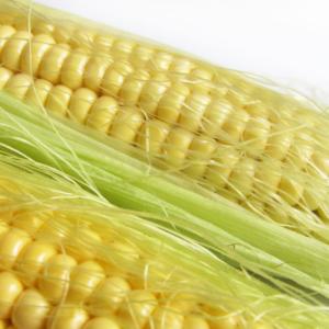 [:ru]Семена кукурузы Мас 44.А[:ua]Насіння кукурудзи Мас 44.А[:]