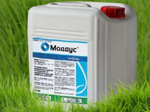 Регулятор роста растений Моддус 250 ЕС