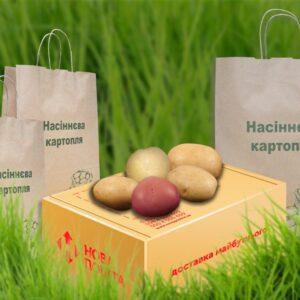 Набор сортов картофеля