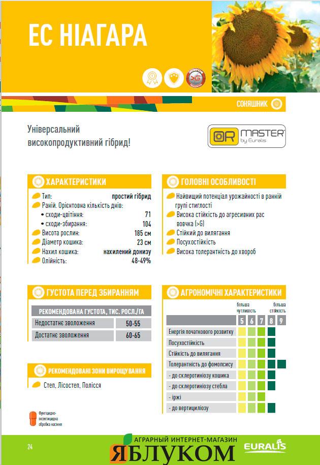 Семена подсолнечника ЕС Ниагара