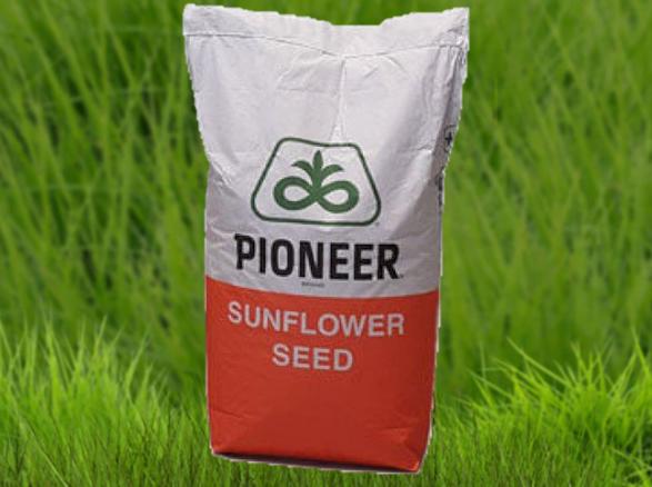 Семена подсолнечника Пионер PR64F66 (ПР64Ф66)