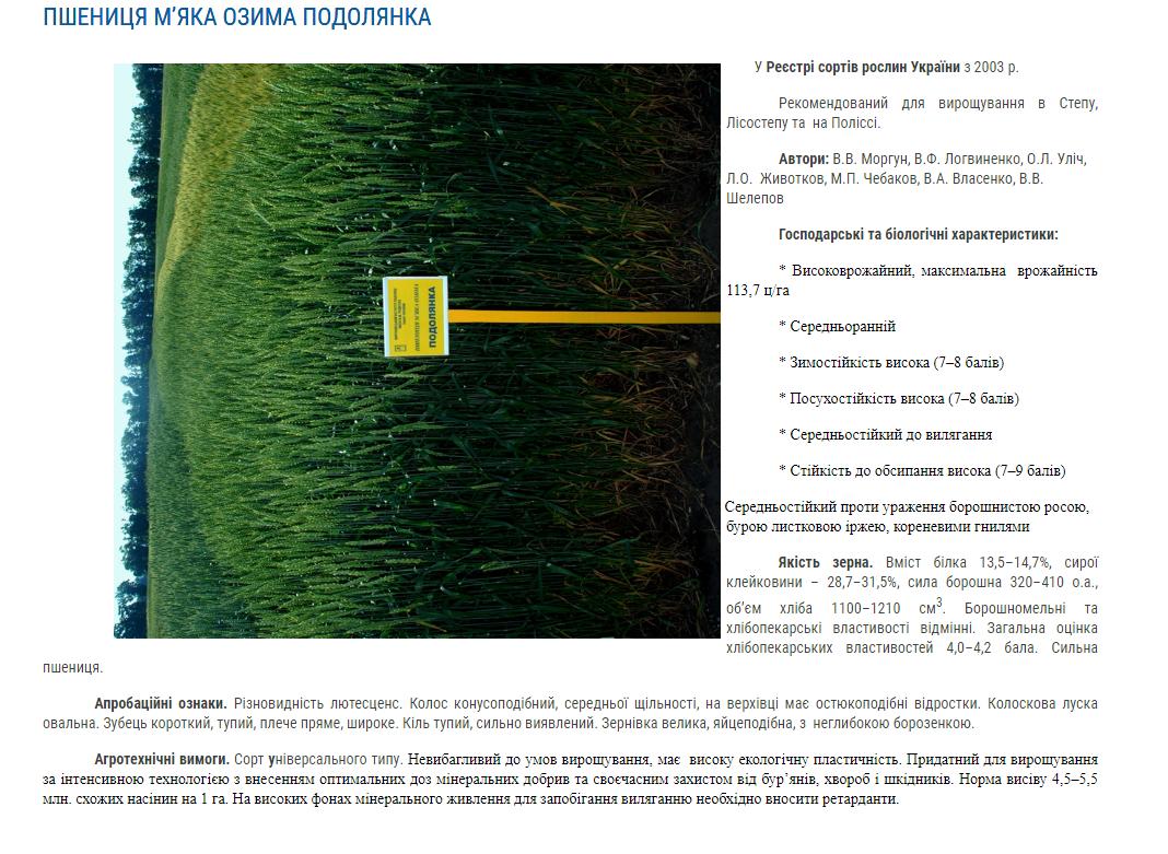 Семена озимой пшеницы Подолянка - купить в Украине ᐈ Яблуком 311130f8c64