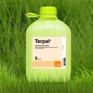 Регулятор роста Терпал