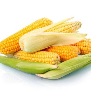 [:ru]Сахарная кукуруза Юрмала[:ua]Цукрова кукурудза Юрмала[:]