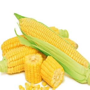 [:ru]Семена кукурузы ЛГ 30360[:ua]Насіння кукурудзи ЛГ 30360 [:]
