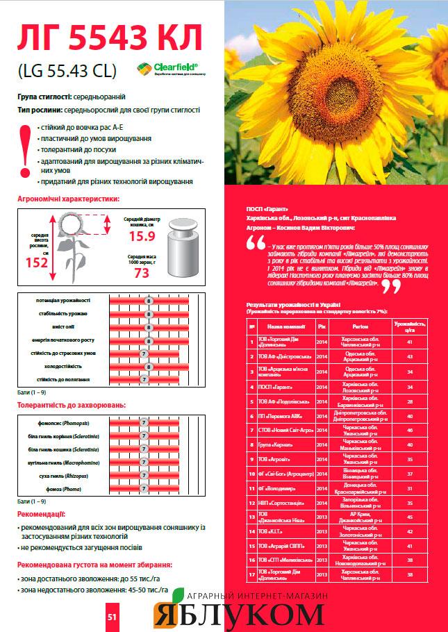 Семена подсолнечника ЛГ 5543 КЛ