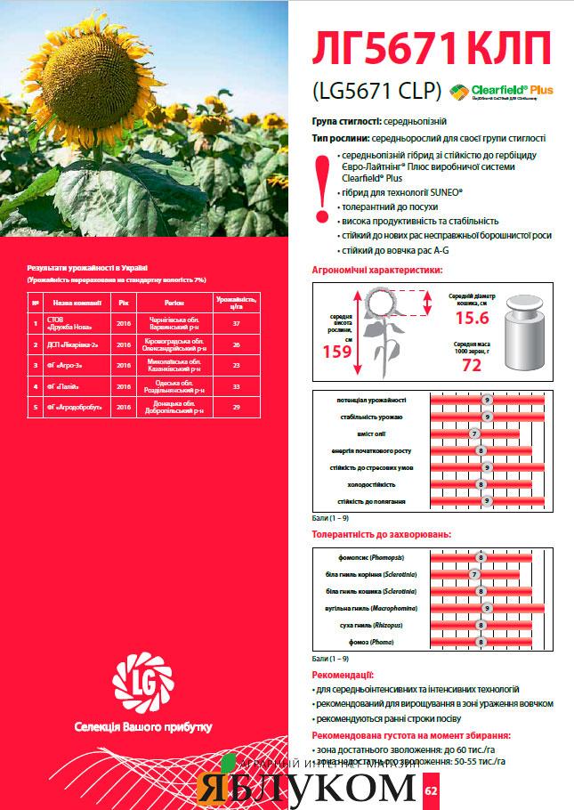 Семена подсолнечника ЛГ 5671 КЛП