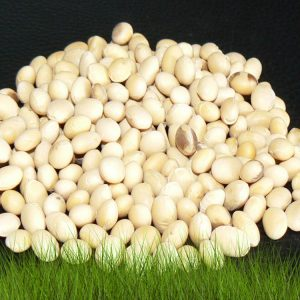 Семена сои Диона