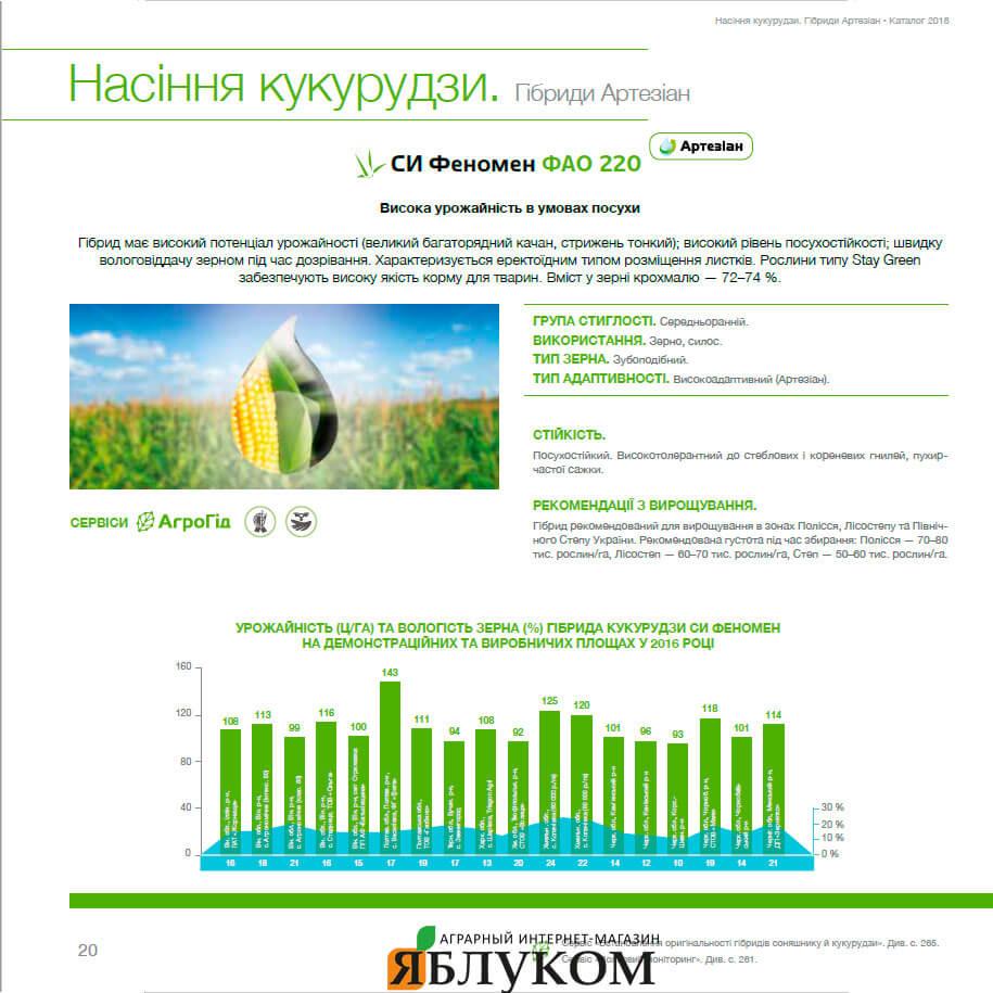 Семена кукурузы СИ Феномен