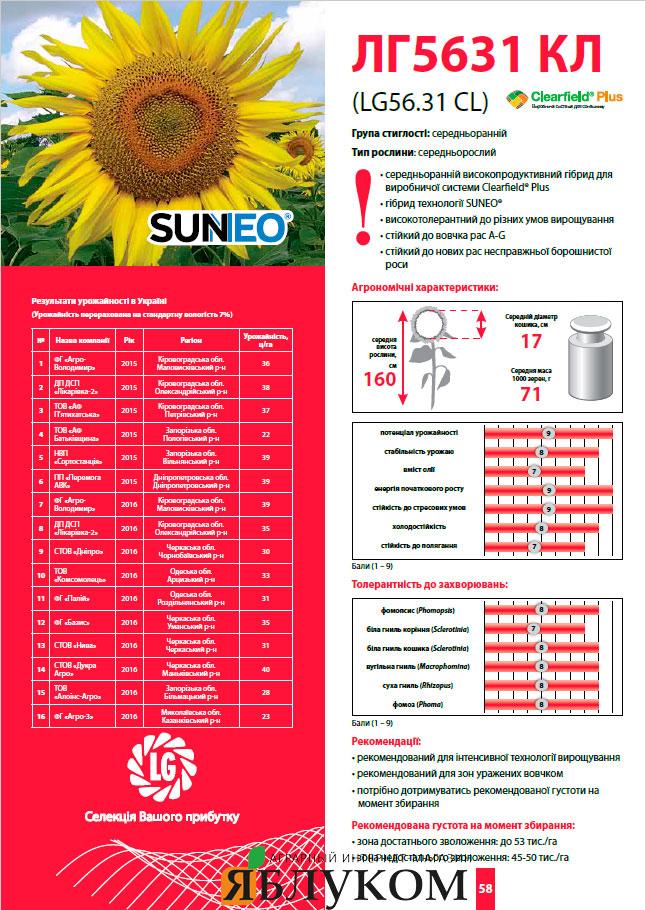 Семена подсолнечника ЛГ 5631 КЛ