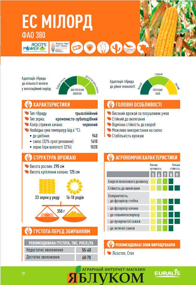 Семена кукурузы ЕС Милорд