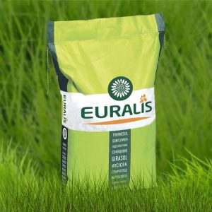Семена подсолнечника ЕС Новамис
