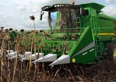 Урожайность подсолнуха в областях Украины