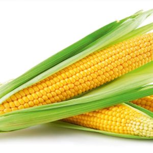 [:ru]Семена кукурузы ДКС 3472 [:ua]Насіння кукурудзи ДКС 3472 [:]