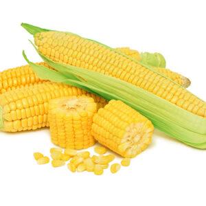 Семена кукурузы ДН Гарант