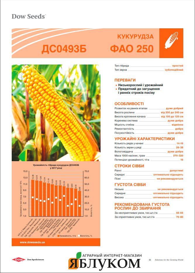 Семена кукурузы ДС0493Б