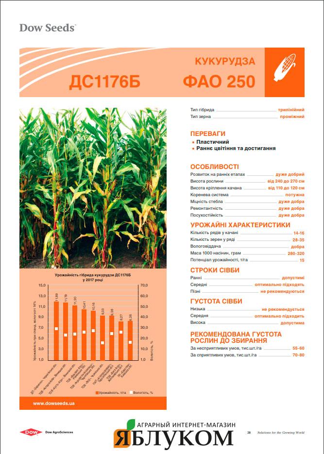 Семена кукурузы ДС1176Б
