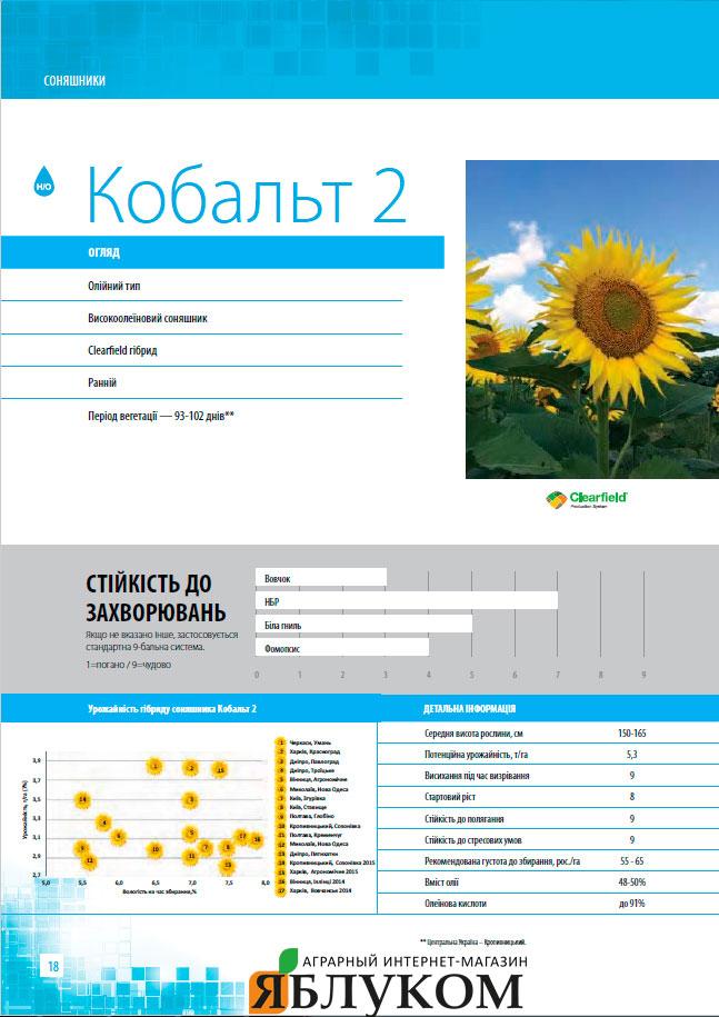 Семена подсолнечника Кобальт 2