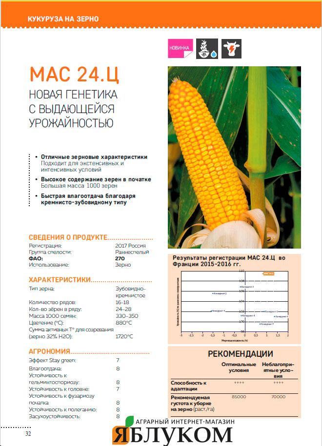 Семена кукурузы MAS 24.С