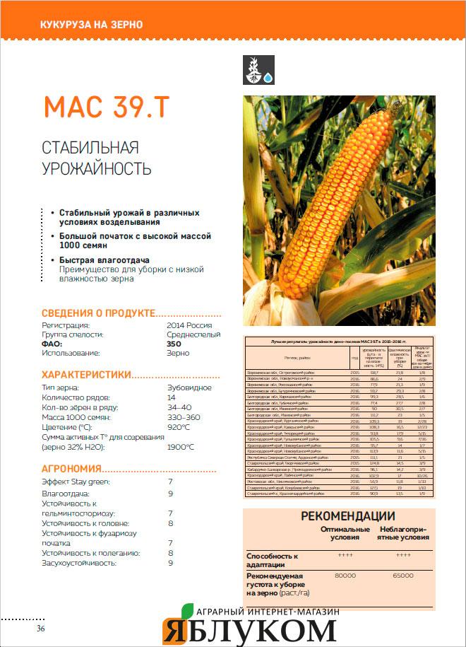 Семена кукурузы Mас 39.Т