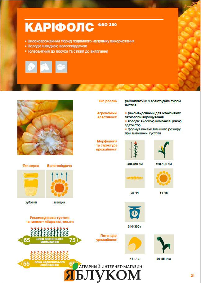 Семена кукурузы Карифолс
