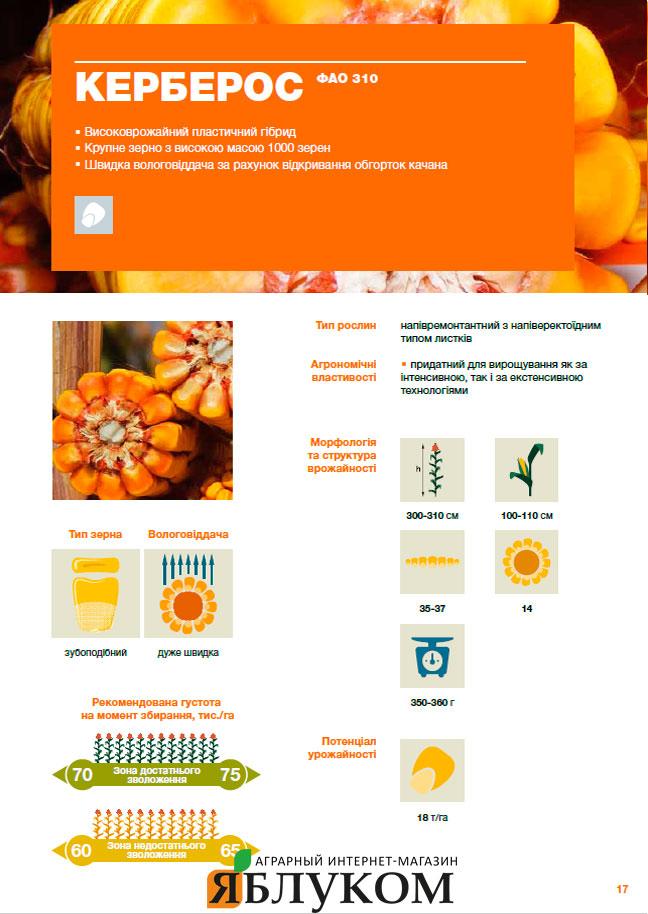Семена кукурузы Керберос