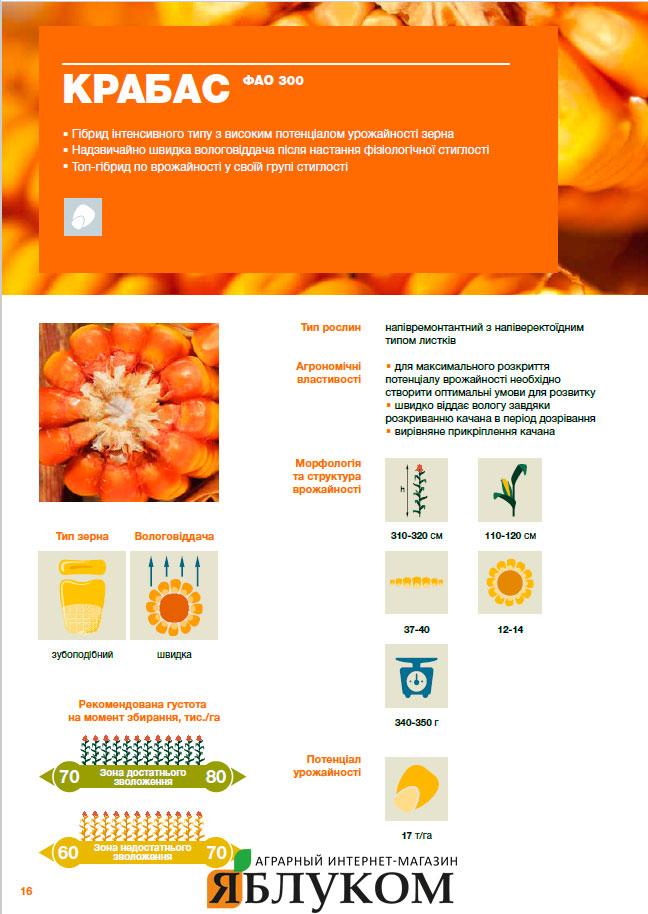 Семена кукурузы Крабас