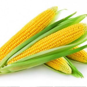 [:ru]Семена кукурузы Крабас[:ua]Насіння кукурудзи Крабас[:]