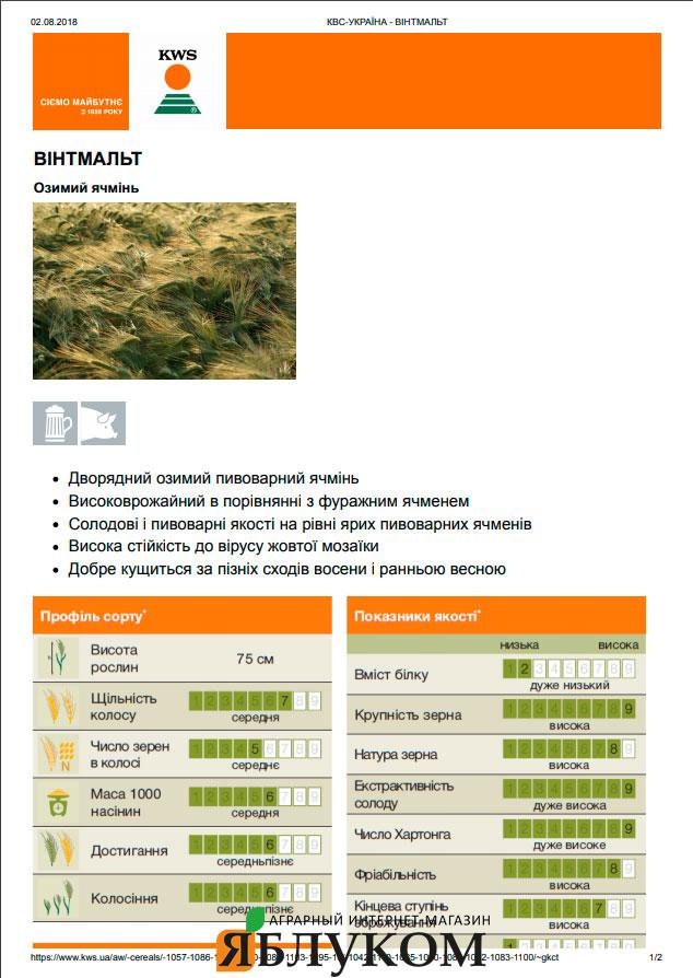 Семена озимого ячменя Винтмальт
