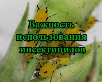 Важность использования инсектицидов