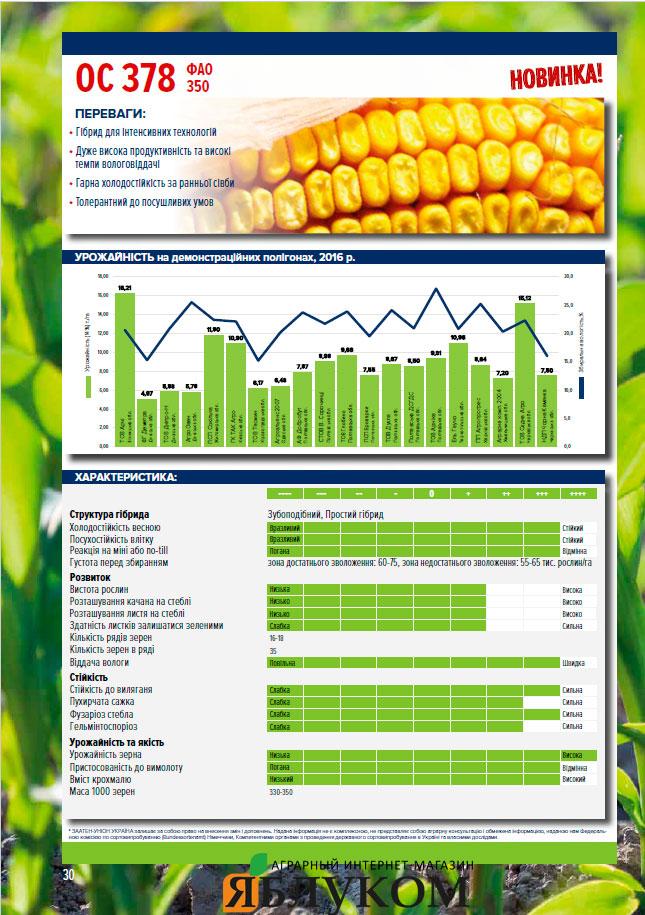 Семена кукурузы ОС 378