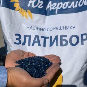 [:ru]Семена подсолнечника Златибор[:ua]Насіння соняшника Златибор[:]